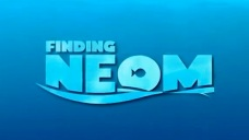 finding-nemo-tc