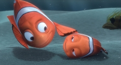 Step-11_Marlin-finds-Nemo